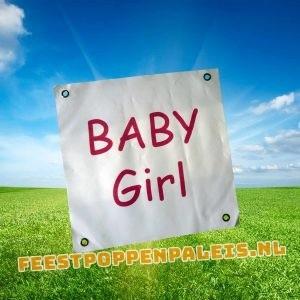 banner - Baby Girl
